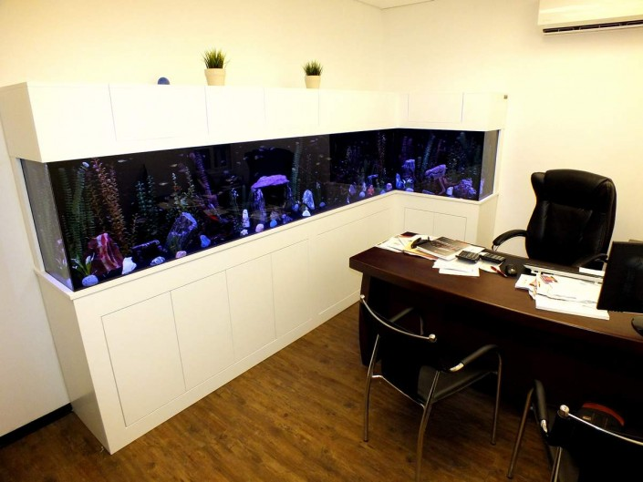 אקווריום במשרד מנכל